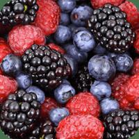 Nos Fruits au détail
