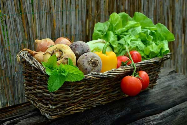 paniers de fruits et légumes bio et locaux