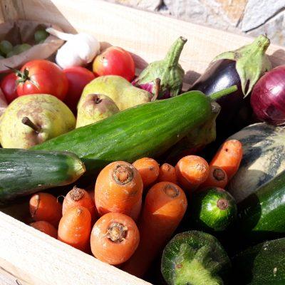 paniers de fruits et legumes bio familial